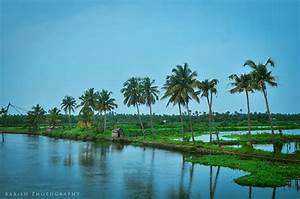 Untouched Beauty of Kerala - Kadamakkudy Islands ...