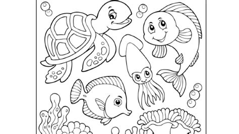 Onderwaterdieren Kleurplaten by Kabinet Voegt Kleurplaat Toe Aan Marrakesh Verdrag