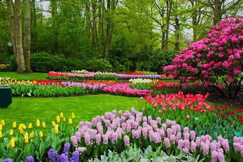 Spring Wallpaper Bing