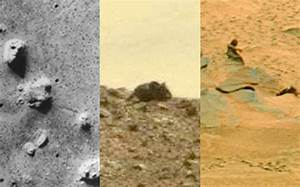 Mouse, mermaids on Mars? 10 weird things photographed by ...