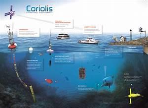 Observing the Ocean - Coriolis : In situ data for ...