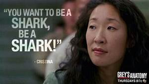 You want to be ... Cristina Yang Cookie Quotes