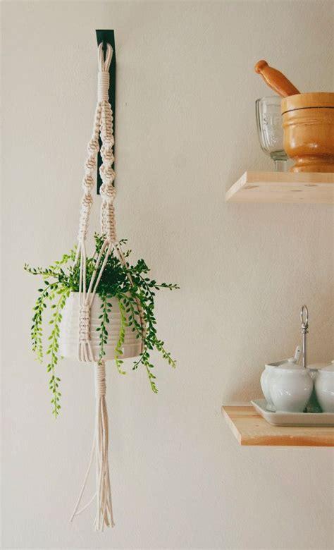 plantes dans une chambre les 25 meilleures idées de la catégorie plantes suspendues