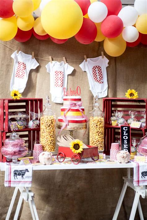 bbq baby shower party ideas photo    catch  party