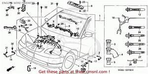 Wiring Harnes For Honda Civic 2004