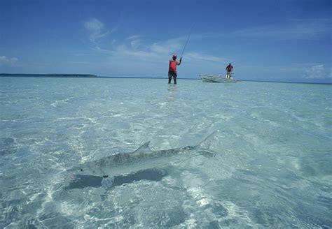 florida fishing bonefish license sand fish beach bone keys tips shore getty cast area saltwater fisherman azel jose surf