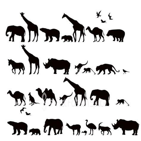 safari animal font images zoo animal alphabet letters