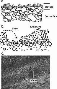 Modes Of Sediment Sorting  A Surface Armor Layer  Powell  1998 After