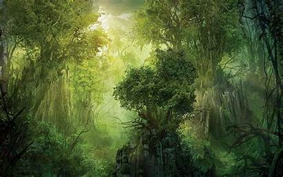 Forest Fantasy Wallpapers