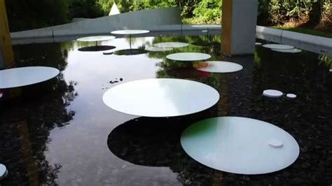 Water Lily ish Sculptures and Other Floating Possibilities