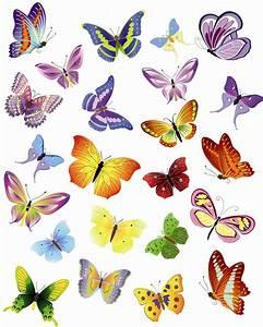 Butterfly Pattern Wall Decor - Quiet Corner