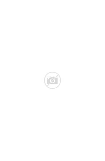 Refrigerator Retro Fridge Chill Refrigerators Kitchen Appliances