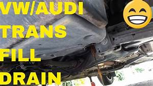 How To Check Vw Transmission Fluid