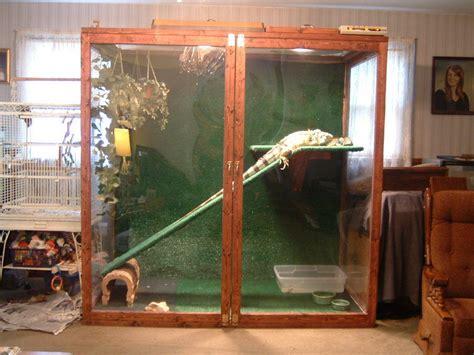 iguana habitat  capsfan  lumberjockscom