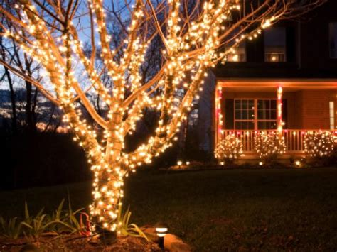 instaliling christmas tree lights buyers guide for the best outdoor lighting diy