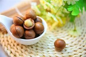 Nüsse Welche Nüsse : 2 gute gr nde warum du deine n sse lieber roh essen solltest gesund heute ~ Cokemachineaccidents.com Haus und Dekorationen