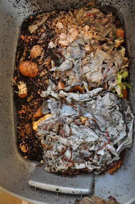 frugal gardening  worms   good   compost