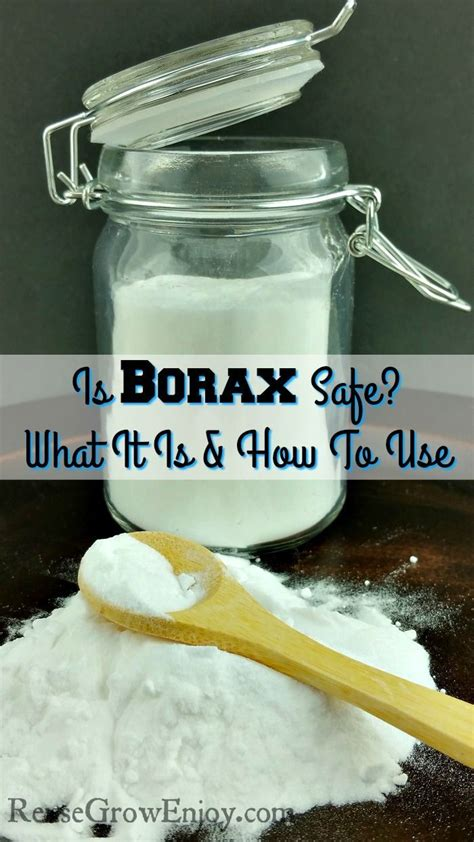 Fleas Hardwood Floors Borax by 1000 Ideas About Borax Cleaning On Clean Tile