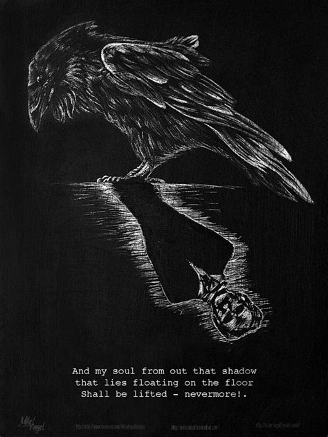 The Raven Edgar Allan Poe  Wwwimgkidcom  The Image Kid Has It
