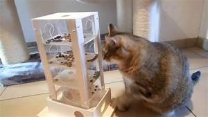 Balkonschutz Für Katzen : spielzeug f r die katze youtube ~ Eleganceandgraceweddings.com Haus und Dekorationen