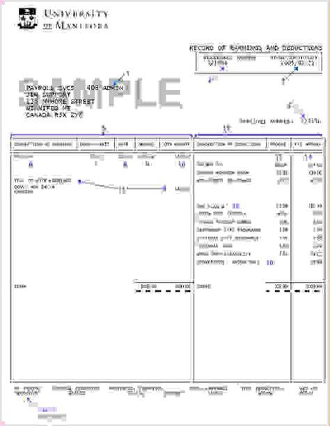 free paycheck stub template 6 free pay stub templatereport template document report template