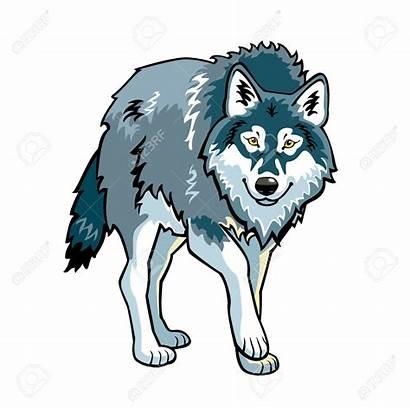 Wolf Vector Clipart Clip Wolves Gray Cartoon