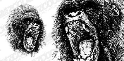 gorilla vector images  vector