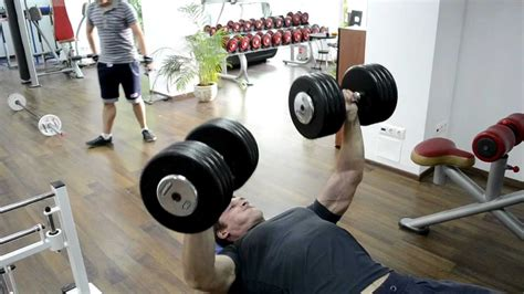 bench press with weights bench press free weights 6 x 220 lbs weight 175