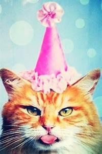 les 201 meilleures images du tableau birthday wedding With charming les idees de ma maison 17 chapeaux danniversaire 6 chapeaux pour fete danniversaire