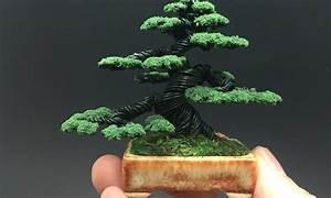 Ein Stck Japan Fr Zuhause Bonsai Arten Und