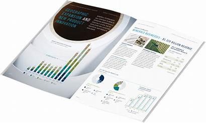 Report Reporting Inetsoft Data Based Web Reports