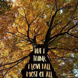 'But I think I love fall most of all' Picture: P ...
