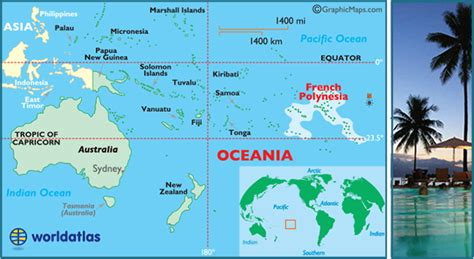 French Polynesia 27000 Chikungunya Cases 5 Deaths