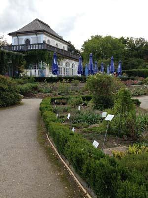 Cafe Nähe Botanischer Garten München by Cafe Im Botanischen Garten Restaurant Und Cafe In M 252 Nchen