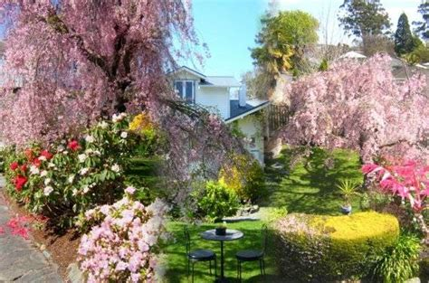 Shelbourne Villa Nelson City Bed And Breakfast