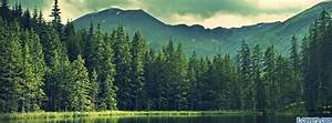 beautiful nature landscape trees Facebook Cover timeline ...