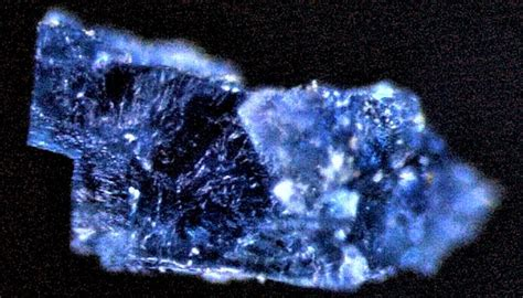 meteorites carrying  water  organic compounds point