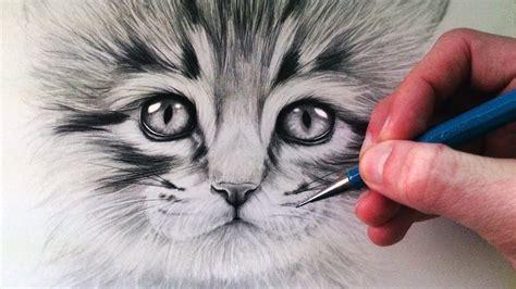 kitten draw cat drawing drawings face realistic pencil fur 3d tutorial animals tutorials visit step