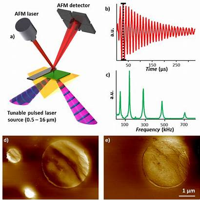 Principle Nir Measurement Illustration Spectroscopy Imaging Ir
