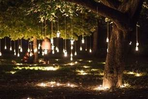 hanging tree lights backyard lighting pinterest backyards pictures and trees