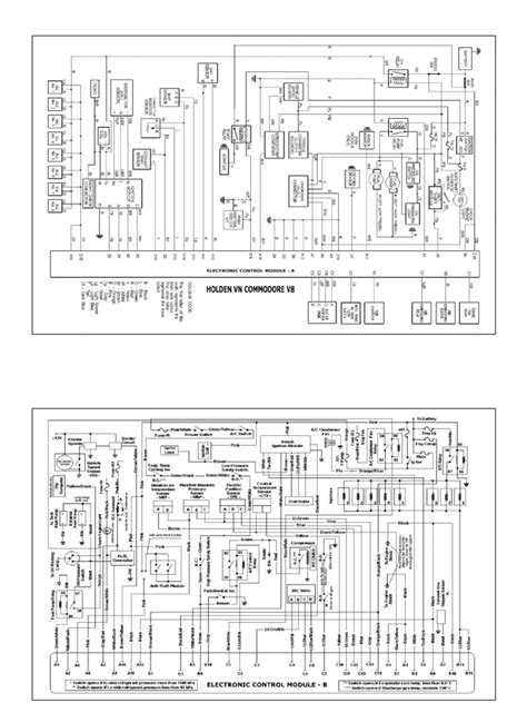 Holden Commodore Electronic Control Module Wiring