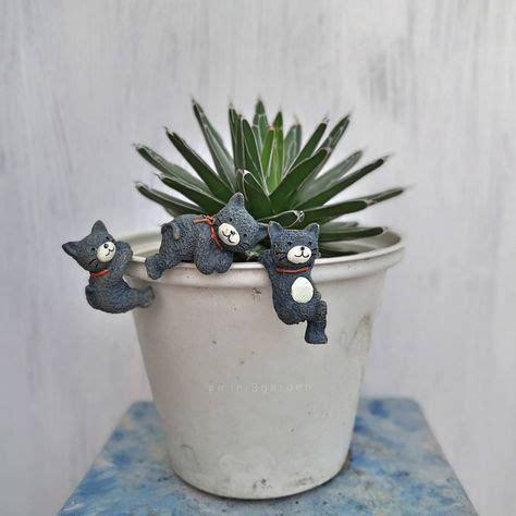 แก็งแมวซนมาทำอะไรแถวเน้...😁😸😺 .#mini3garden #cactusway ...