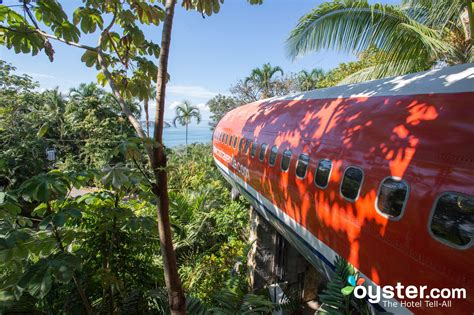 This Airplane Hotel Room in the Jungle Will Blow Your Mind   Oyster.com