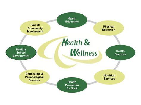 Health And Wellness health wellness advisory council mansfield school