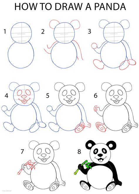 drawn panda step  step pencil   color drawn panda