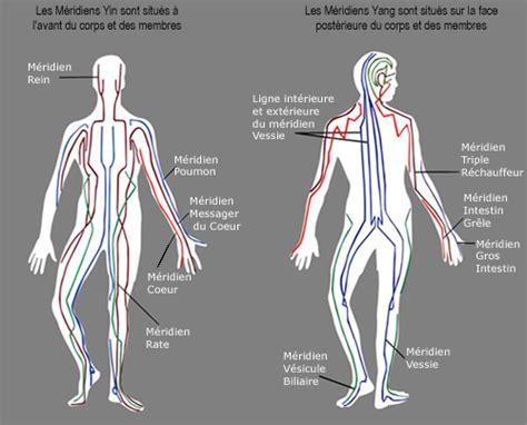 les m 233 ridiens de l acupuncture