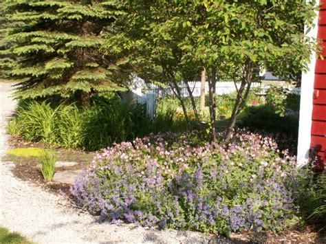 perennial garden landscape ideas