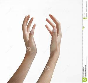 Woman's Hands Reaching Up stock photo. Image of fingers ...