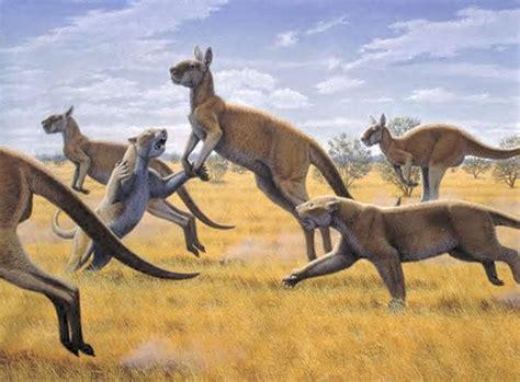 images  pleistocene  australia  pinterest