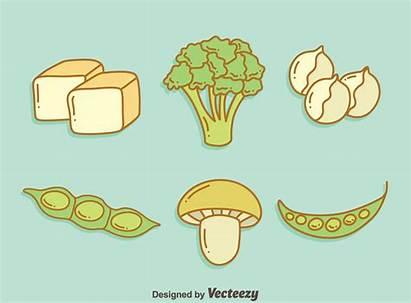 Protein Vegan Vector Vegetable Clipart Vectors Gaming